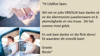 LilyBlue Real Wedding Testimonial - NIcole