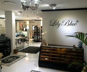 LilyBlue Studio Entrance 2